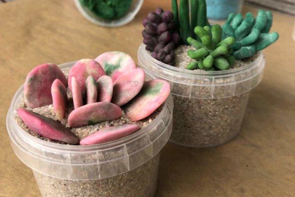 Pflanzen aus Knete mit neogrün Bio-Knete