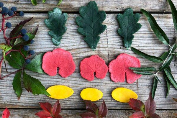 Blätter aus neogrün Knete